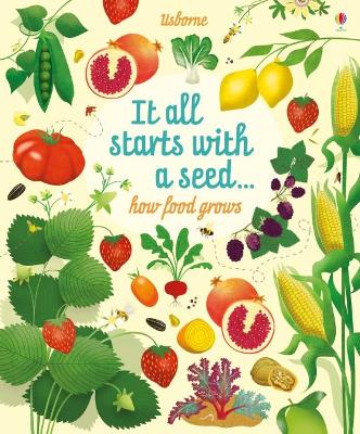 Big Picture Book How Food Grows by Emily Bone