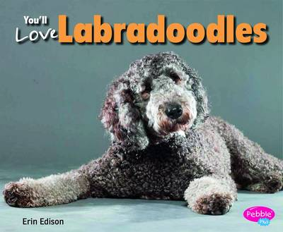 You'll Love Labradoodles by Erin Edson