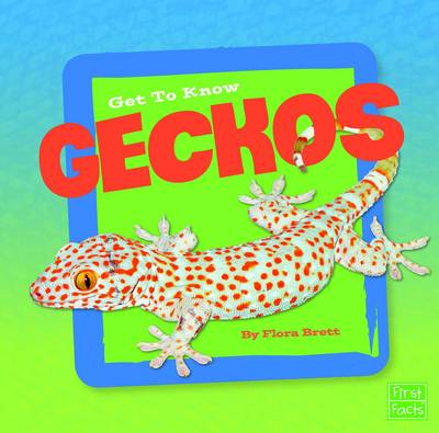 Get to Know Geckos by Flora Brett