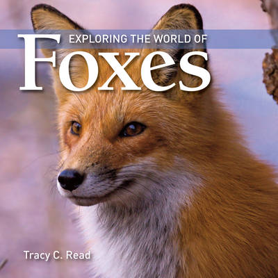 Exploring the World of Foxes by Tracy C. Read