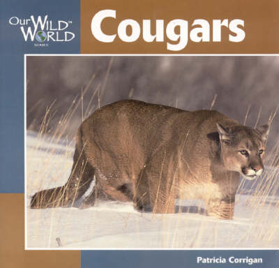 Cougars by Patricia Corrigan