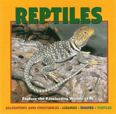 Reptiles Alligators and Crocodiles, Lizards, Snakes and Turtles by Deborah Dennard