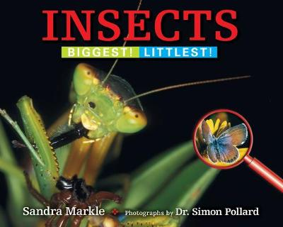 Insects Biggest! Littlest! by Sandra Markle, Simon Pollard