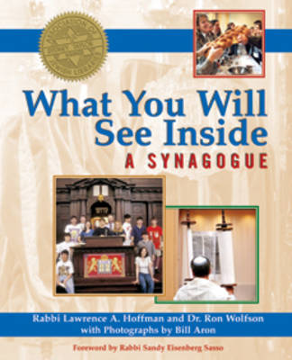 What You Will See Inside a Synagogue by Lawrence A. Hoffman, Ron Wolfson