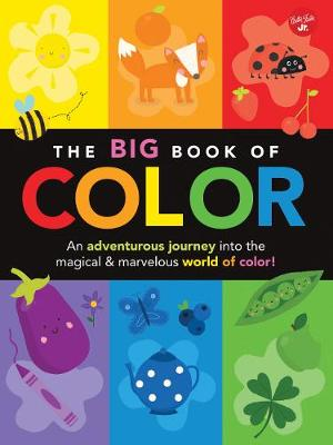 The Big Book of Color An adventurous journey into the magical & marvelous world of color! by Lisa Martin, Damien Barlow
