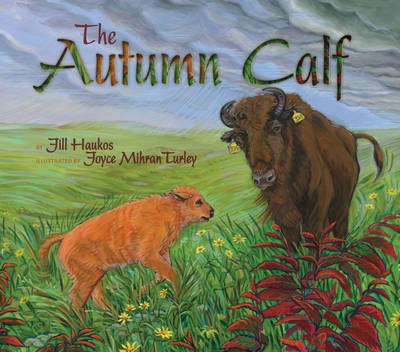 The Autumn Calf by Jill Haukos