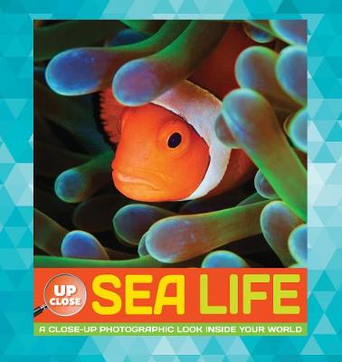 Sea Life A Close-Up Photographic Look Inside Your World by Heidi Fiedler