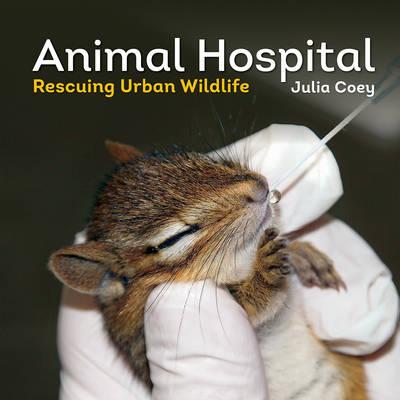 Animal Hospital Rescuing Urban Wildlife by Julia Coey, Nathalie Karvonen
