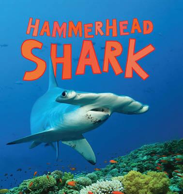 Discover Sharks: Hammerhead Shark by Camilla de la Bedoyere