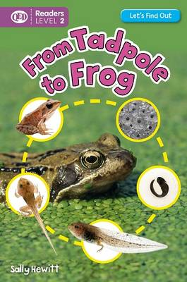 Let's Find Out: Tadpole to Frog by Sally Hewitt, Ian K. Smith