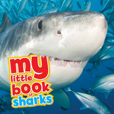 My Little Book of... Sharks by Camilla de le Bedoyere