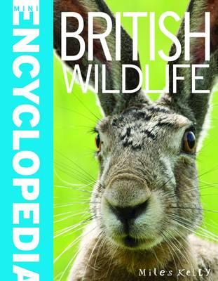 Mini Encyclopedia - British Wildlife by Belinda Gallagher