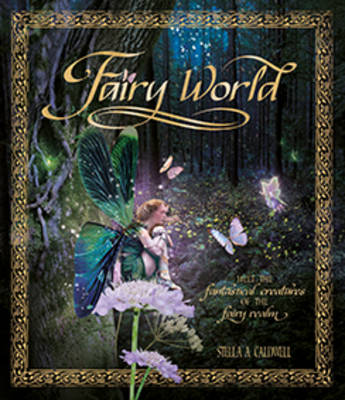 Fairyworld Enter the Magical and Mysterious Realm by Stella Caldwell