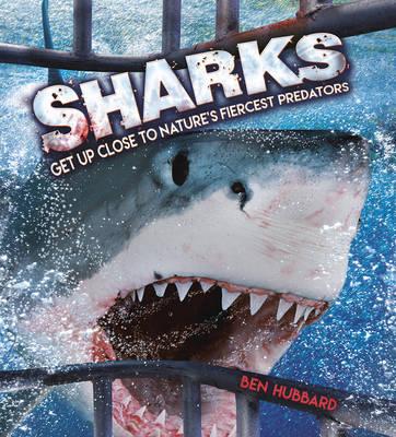 Sharks by Ben Hubbard