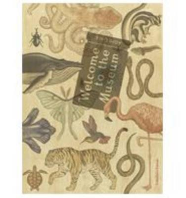 Welcome to the Museum Animalium Collector's Edition by Jenny Broom