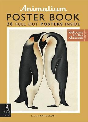 Animalium Poster Book by Susanna Davidson