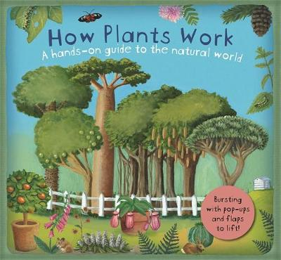 How Plants Work by Christiane Dorion