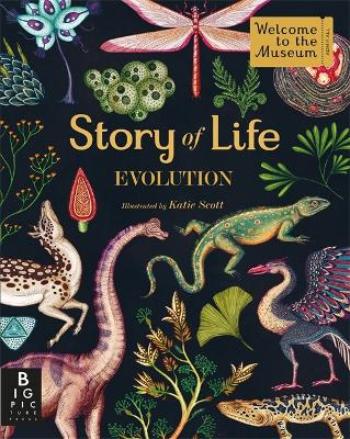 Story of Life: Evolution by Katie Scott