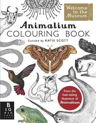 Animalium Colouring Book by Kate Baker