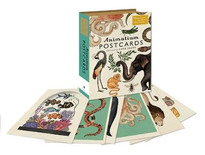 Animalium Postcards by Katie Scott