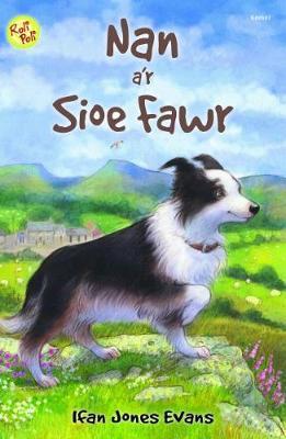 Cyfres Roli Poli: Nan a'r Sioe Fawr by Ifan Jones Evans