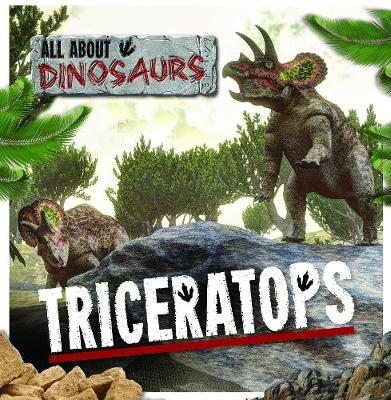 Triceratops by Amy Allatson