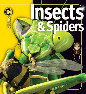 Insects and Spiders : Insiders Series by
