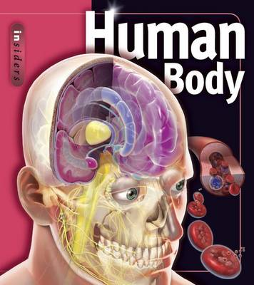 Human Body by Linda Calabresi