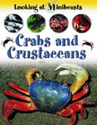 Crabs and Other Crustaceans by Sally Morgan