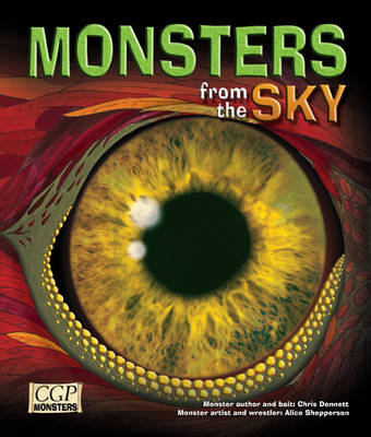 KS2 Monsters from the Sky Reading Book by CGP Books