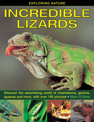 Exploring Nature: Incredible Lizards Discover the Astonishing World of Chameleons, Geckos, Iguanas and More, with Over 190 Pictures by Mark O'Shea