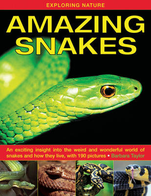 Exploring Nature: Amazing Snakes an Exciting Insight into the Weird and Wonderful World of Snakes and How They Live, with 190 Pictures by Barbara Taylor