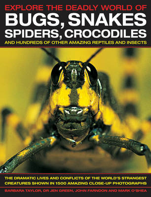 Explore the Deadly World of Bugs, Snakes, Spiders, Crocodiles by Barbara Taylor, Dr Jen Green, John Farndon, Mark O'Shea