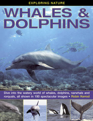 Exploring Nature: Whales & Dolphins Dive into the Watery World of Whales, Dolphins, Narwhals and Rorquals, All Shown in 190 Spectacular Images by Robin Kerrod