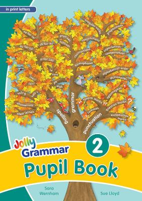 Grammar 2 Pupil Book (in print letters) in Print Letters (BE) by Sara Wernham, Sue Lloyd