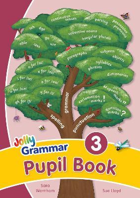 Grammar 3 Pupil Book in Precursive Letters (BE) by Sara Wernham, Sue Lloyd