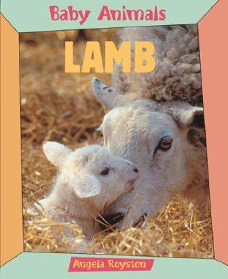 Lamb by Angela Royston