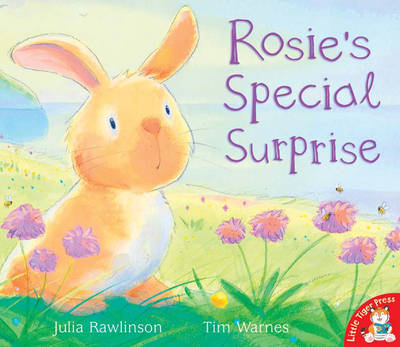 Rosie's Special Surprise by Julia Rawlinson, Tim Warnes