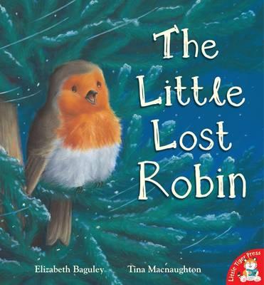 The Little Lost Robin by Elizabeth Baguley