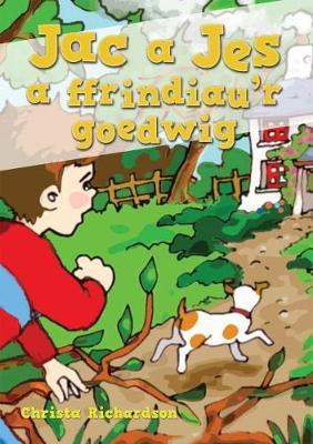 Cyfres Jac a Jes: Jac a Jes a Ffrindiau'r Goedwig by Christa Richardson