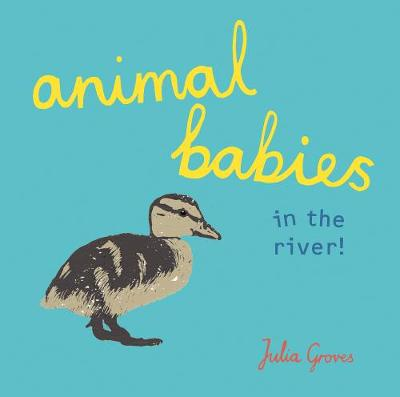 Animal Babies in the river! by Julia Groves