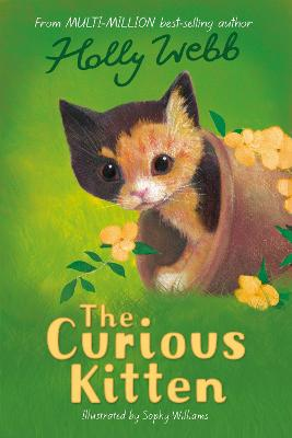 The Curious Kitten by Holly Webb
