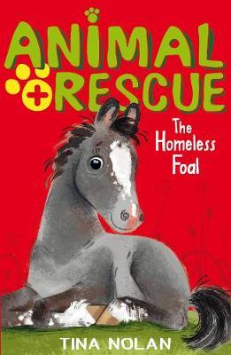 The Homeless Foal by Tina Nolan