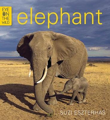 Elephant by Suzi Eszterhas
