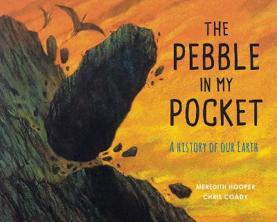 The Pebble in my Pocket A History of Our Earth by Meredith Hooper