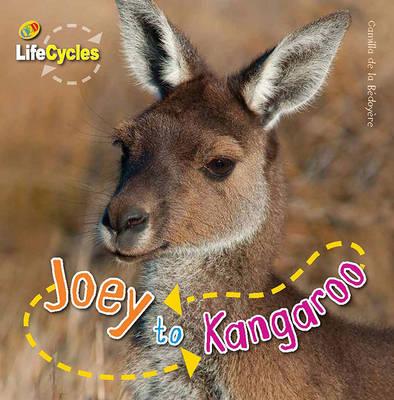 Lifecycles: Joey to Kangaroo by Camilla De la Bedoyere