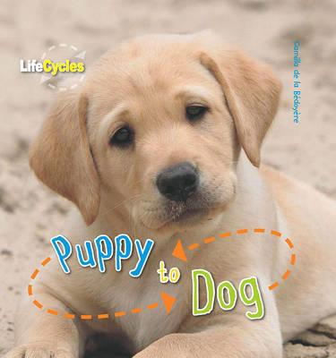 Life Cycles: Puppy to Dog by Camilla De la Bedoyere