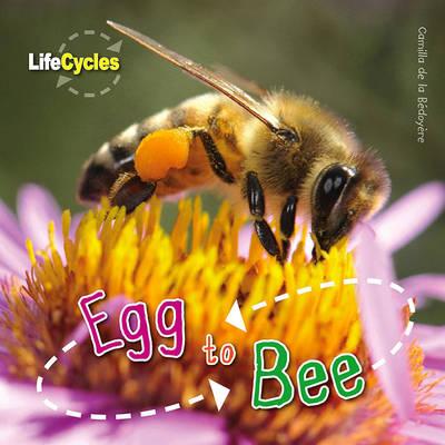 Life Cycles: Egg to Bee by Camilla De la Bedoyere