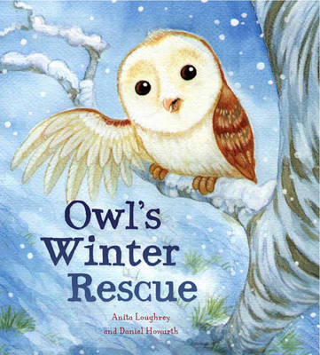 Animal Seasons: Owl's Winter Rescue by Anita Loughrey