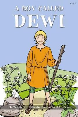 Boy Called Dewi, A by Steffan Lloyd